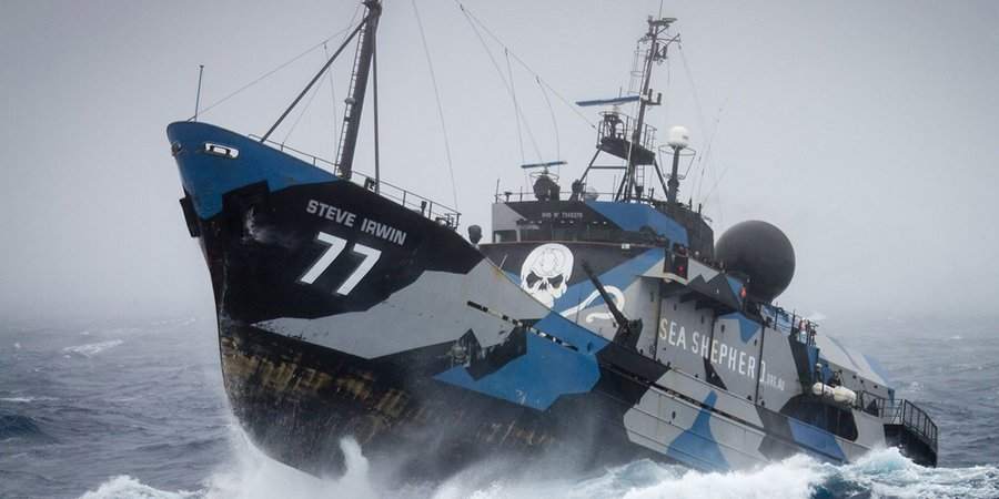Fish For Your Soul at Sea Shepherd's Ocean Defence Tour